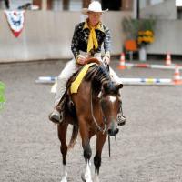 Pferdetrainer beim Beritt eines Pferdes aus dem Offenstall.