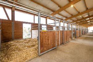 Pferdeboxen des Pensionsstalls Ristenbühl Ranch in Matzingen.