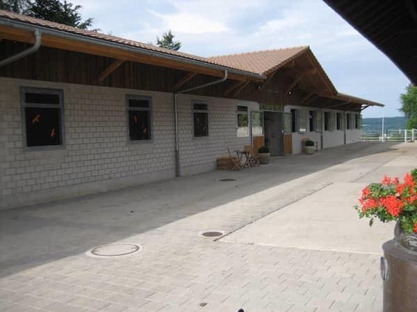 Hauptstall Ausbildungsstall Mülirain