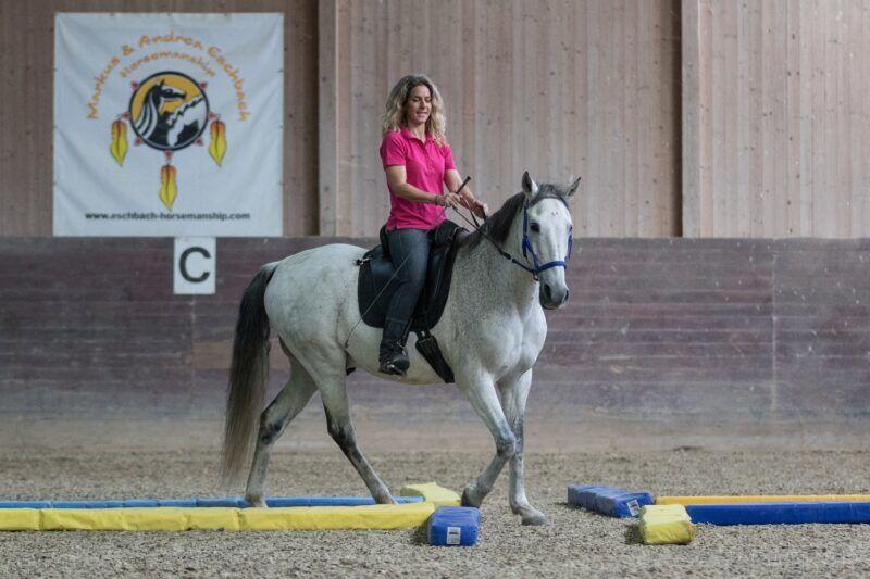 Andrea Eschbach Pferdeausbildung