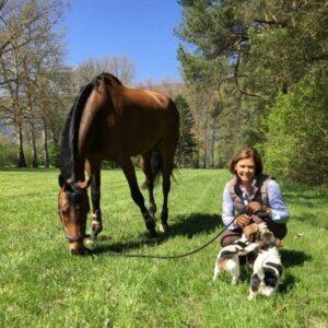 life coaching mit pferden e. schneider