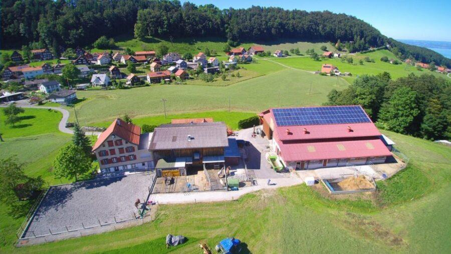 Pferdepension Hof-Grünau