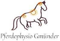 Pferdephysio Gmünder