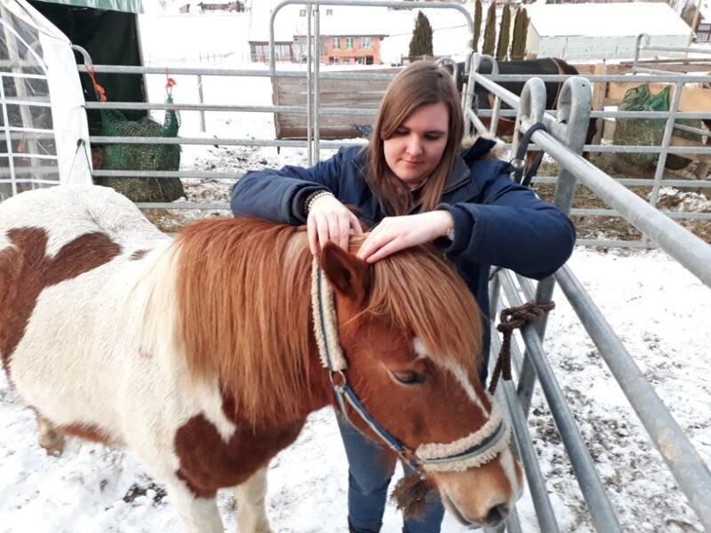 ganzheitliche Tiertherapie